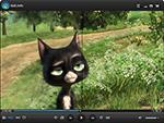 Увеличение насыщенности цветов да четкости изображения на WindowsPlayer